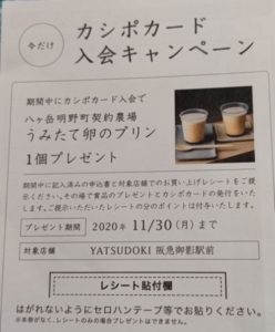 カシポ入会キャンペーン